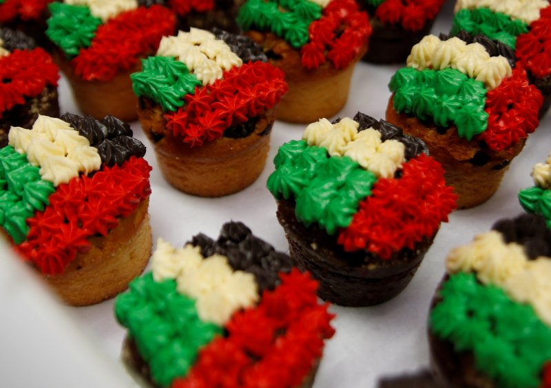 DNJ_UAE_National_Day_2015_3